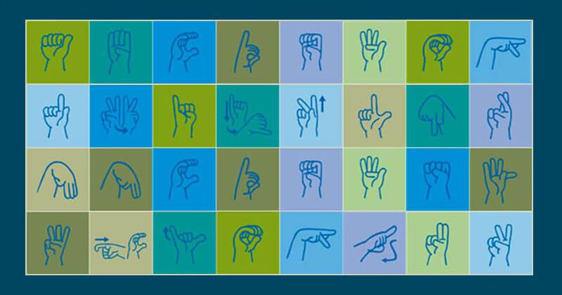O Dicionário da Língua de Sinais do Brasil – A Libras em Suas Mãos: resultado de pesquisas realizadas ao longo de um quarto de século.